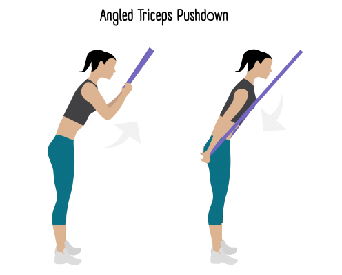 Angled triceps Pushdowns exercise Image