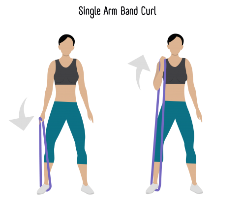 Single Arm Curl Exercise